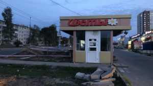 В Брянске попросили проложить пешеходную дорожку до «Аэропарка»