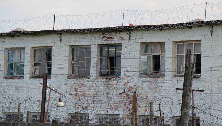В брянской колонии решили заменить заваленный ветром забор