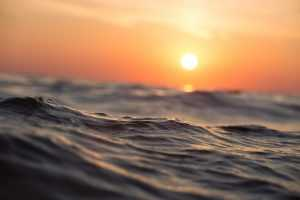 Баренцево море почернело от горя