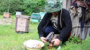 Брянские пчеловоды провели революционные преобразования