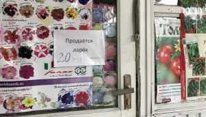 В Брянске из-за онлайн-касс стали массово закрываться киоски