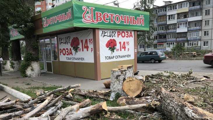 В Брянске временно отменили остановку «Переулок Пилотов»