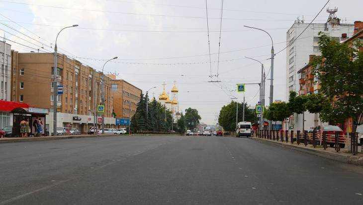 Жителей Брянска возмутило поведение водителей после ДТП с кошкой