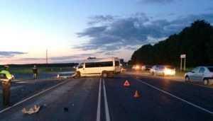Под Брянском в ДТП с маршруткой погиб 35-летний водитель Opel