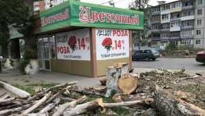 В Брянске остановку на Авиационной улице вернут в конце июля
