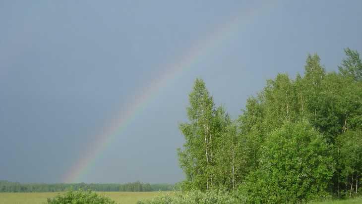 В Брянской области 2 июля прогремят грозы