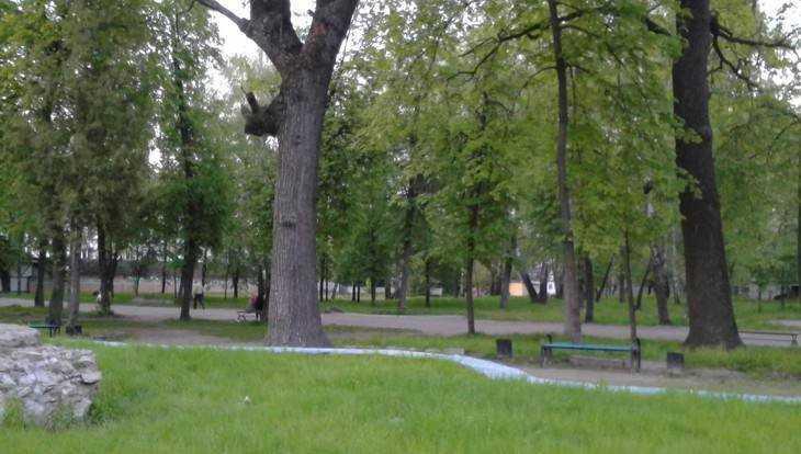 В двух парках Брянска появились зоны бесплатного Wi-Fi