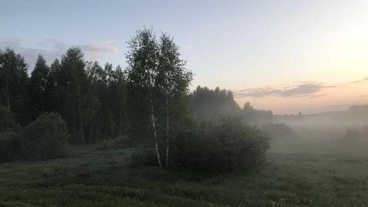 В Брянской области ночью 14 июля похолодает до 6 градусов