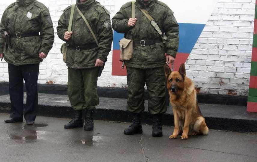 Украинец на лодке пересек брянскую границу