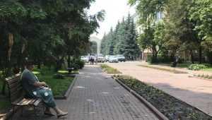 Мэр Брянска предложил запретить парковку возле сквера Карла Маркса