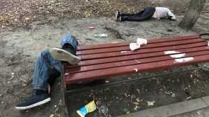 Брянские алкоголики из-за безволия властей понесли свинство в массы