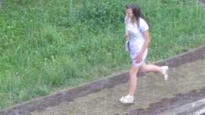 В Брянской области пройдут грибные дожди