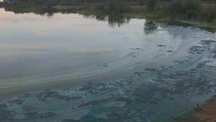 Цвет воды в озере под Брянском встревожил жителей