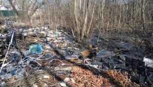 Брянскую область за пять лет очистят от 17 свалок