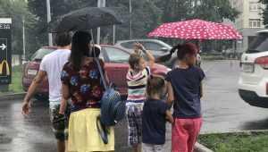 На Брянскую область 16 июля обрушатся грозы