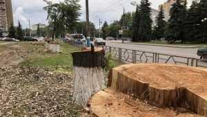 На Авиационной улице в Брянске продолжается масштабный ремонт