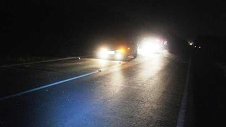 Полиция обратилась к свидетелям ночного наезда на пешехода уДобруни