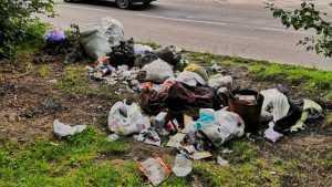 В Бежицком районе Брянска возле школы образовалась свалка