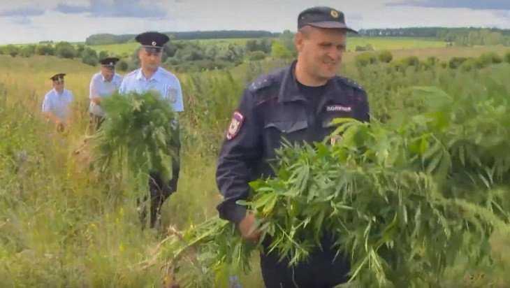 Полицейские за 10 дней изъяли у брянцев 2 килограмма наркотиков