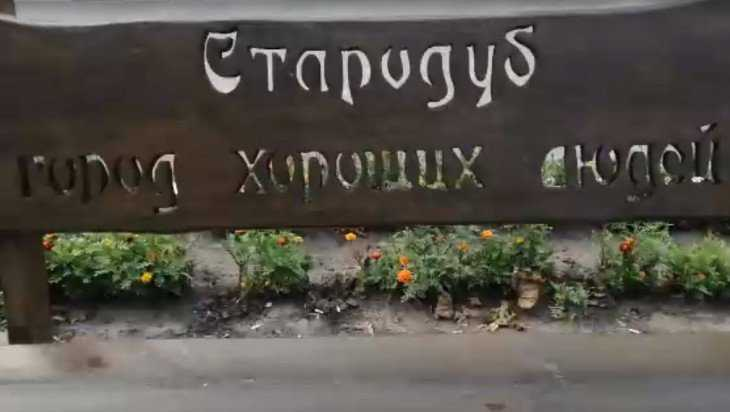 Стародубские вандалы испортили дар городу