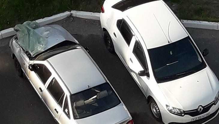 Жителей Брянска предупредили об автомобильных мародерах
