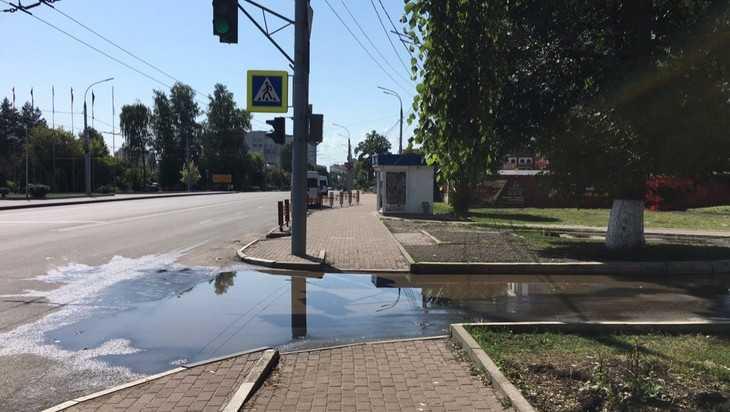 Брянские пешеходы пожаловались на лужи в солнечный день