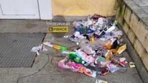 В Брянске возле закрытого магазина «Журавли» устроили свинарник