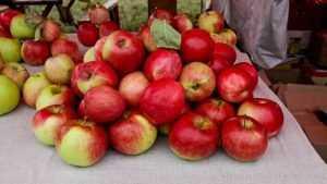 На рынке Брянска священник купил фрукты матери пятерых детей