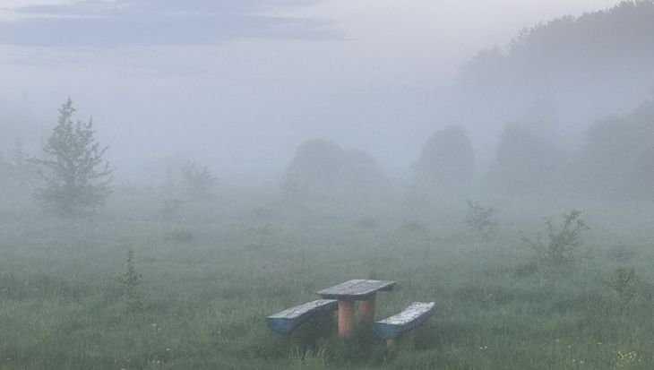 В Брянской области ближайшей ночью похолодает до 9 градусов
