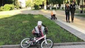 Власти Брянска откликнулись на беду пострадавшей в парке девочки