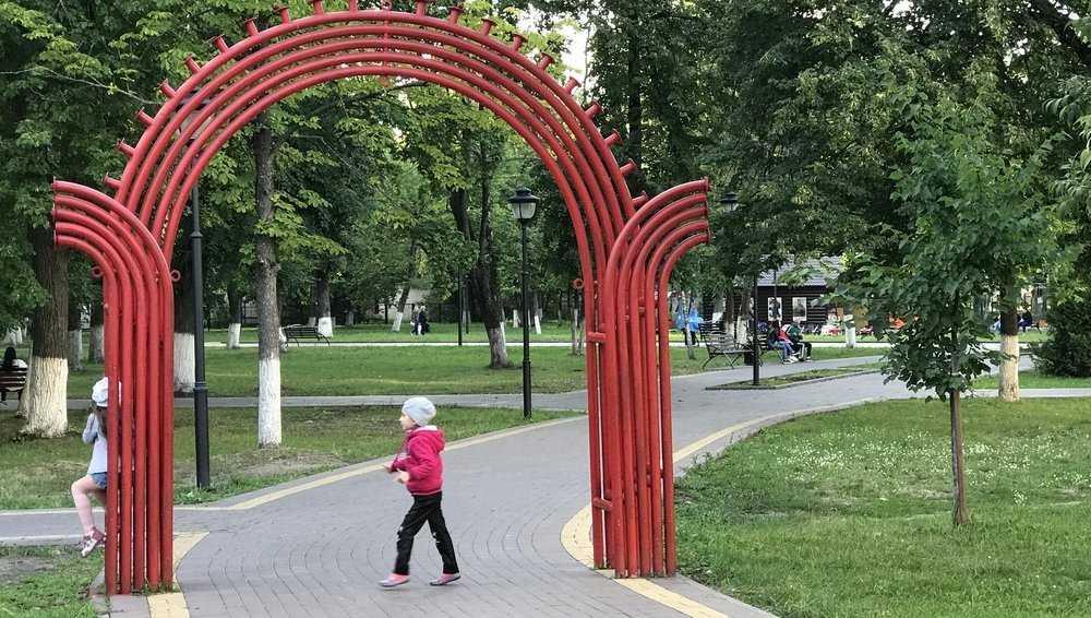 В Брянске пошла на поправку девочка, на которую в парке упала ветка