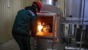 В Брянске бизнесменов наказали за незаконное сжигание мусора в печах