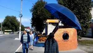 В Жуковке установили необычную остановку в виде зонта