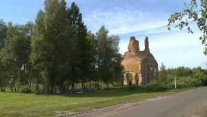 Следы загадочной смерти потомка Потемкина привели в брянское село
