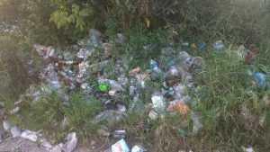 В Брянске берег озера Орлик изнурённые бездельники превратили в свалку