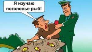 Жителя Унечи оштрафовали на 20 тысяч рублей за незаконную рыбалку
