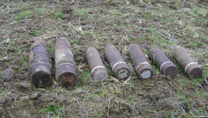 Под Карачевом в лесу обнаружили мину и 22 снаряда времён войны