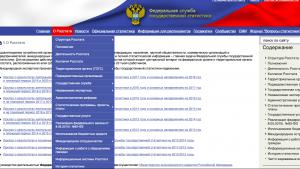 Счетная палата указала Росстату на отсутствие сайта и приложения за 64 миллиона