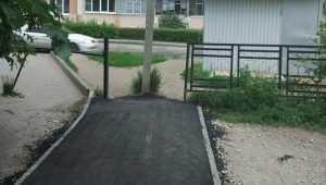 В Брянске шутники завершили строительство пешеходной дорожки столбом