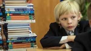 В Дубровке чиновникам велели купить школьникам 364 учебника