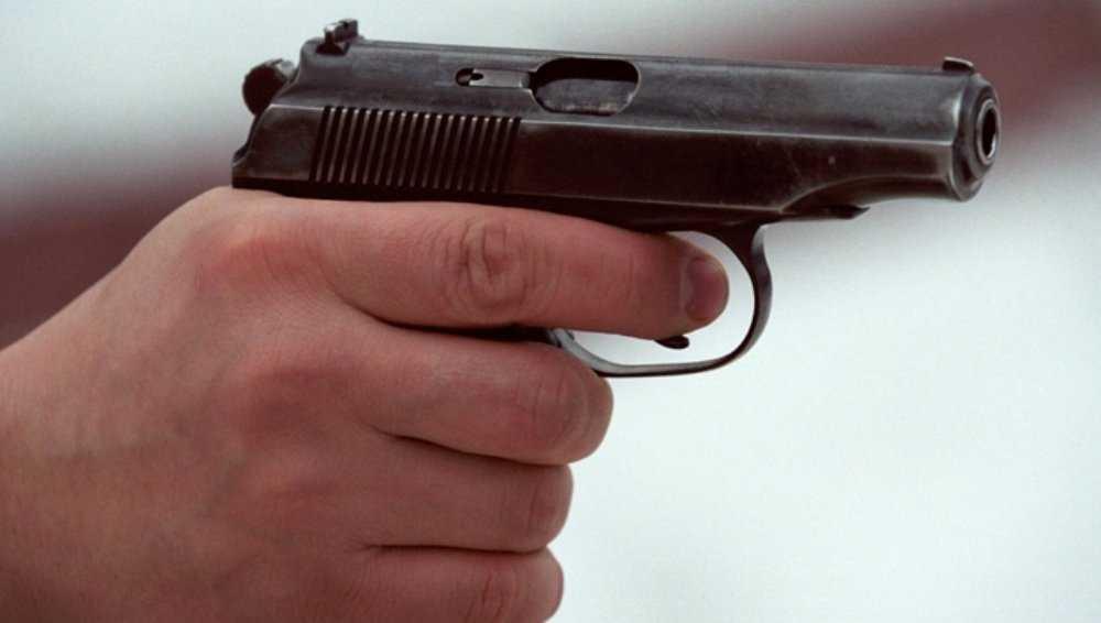 В Сельцо полицейские ранили напавшего на них с ножом убийцу