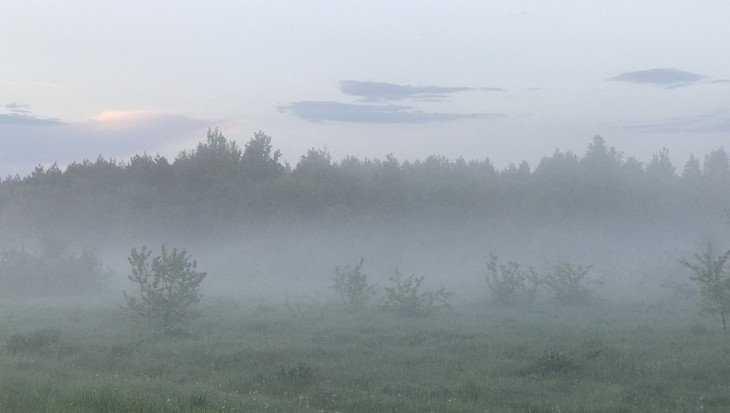 В Брянской области в воскресенье будет дождливо и прохладно