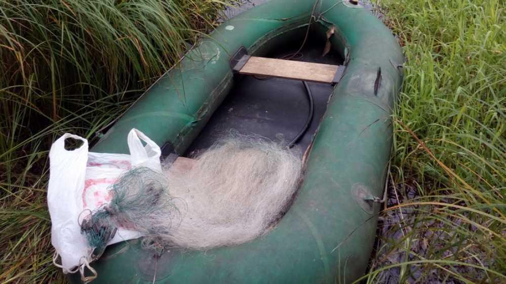 Брянска полиция за 10 дней охоты на браконьеров завела 8 уголовных дел