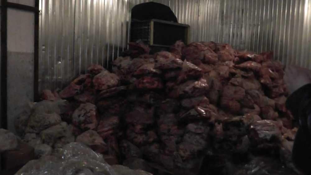На комбинате брянского экс-депутата Толстенка изъяли 20 тонн сомнительного мяса