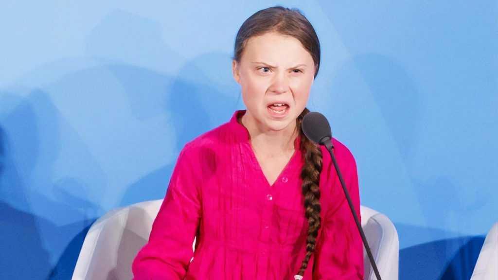 Кто стоит за проектом «Грета Тунберг»