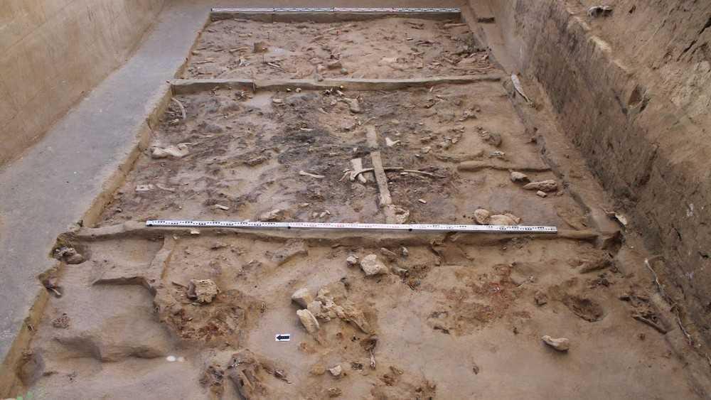 В Брянском районе нашли святилище возрастом 23 тысячи лет