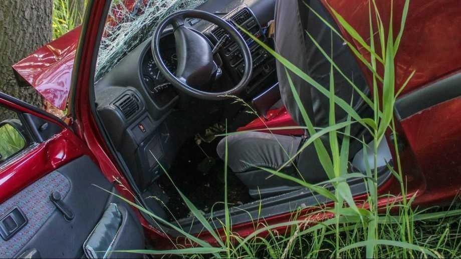 Под Жуковкой ВАЗ врезался в дерево – пострадали два человека