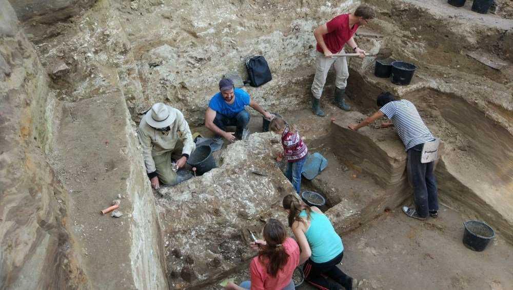 В Брянск приедут археологи со всего мира