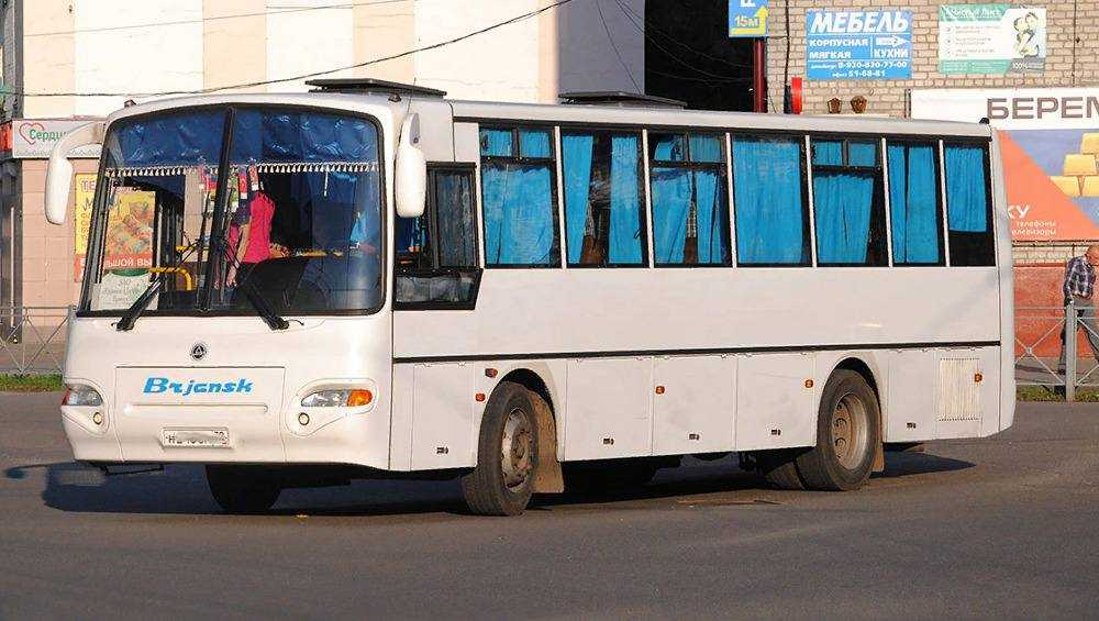 Брянские гаишники за три дня наказали 324 водителя автобусов