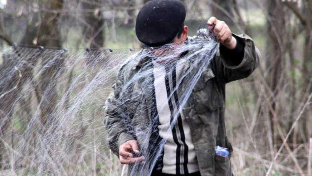 В Клинцах осудили 73-летнего браконьера